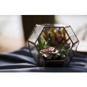 Dodekaeder Glas, Florarium, Terrarium, Blumentreppe