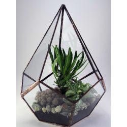 Konisches Geometrisches Florarium Glas, Terrarium, Blumentreppe